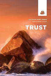 Trust faith study participant guide
