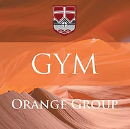 Gym orange.PNG