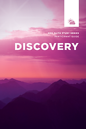 Discovery faith study participant guide