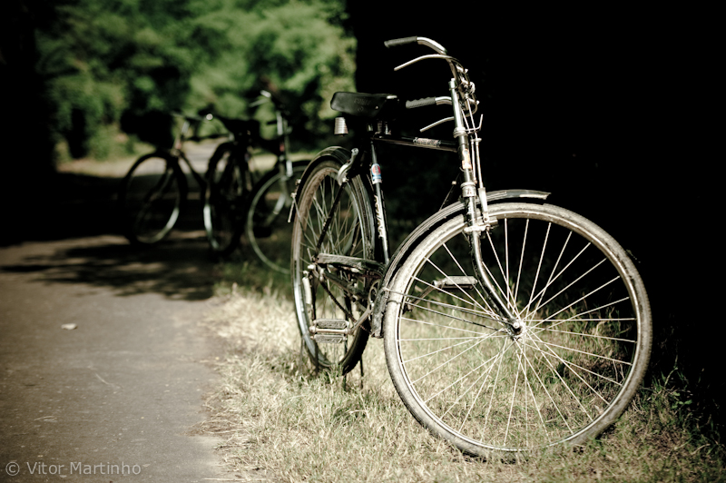 """Exploring bikes"""