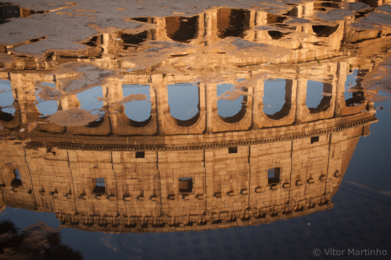 """Colosseum reflected"""