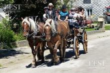 Pour les futurs utilisateurs de chevaux attelés la rentrée approche