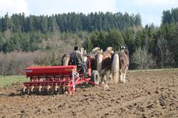UTILISATION AGRICOLE
