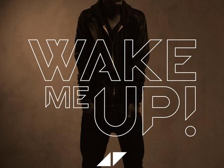 Avicii - WAKE ME UP vocabulary