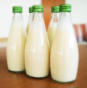Entrega Início Milk