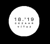 LOGO VITAZ.png