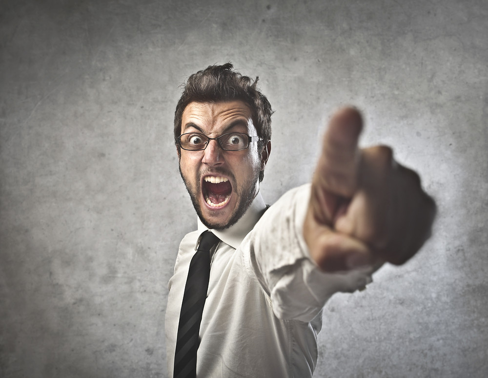 The Solution Engine Blog: A good boss beats a bad job | Allan Evans