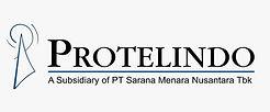 protelindo-logo-IST.jpg