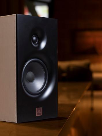 Magna Audio Speaker - Designed Bookshelf Acabamento Natural