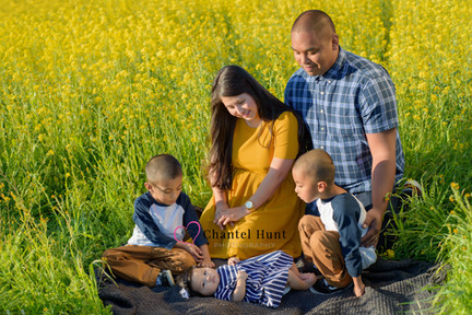 Mustard Field Family Pictures