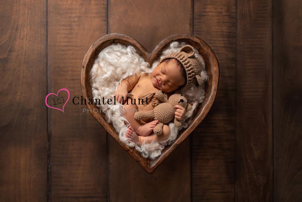 marysville newborn photographer chantel hunt