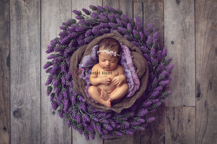 on location newborn photographer
