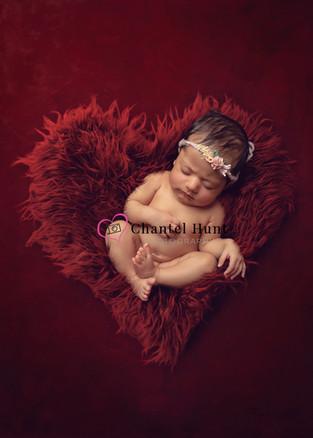 red fur heart1.jpg