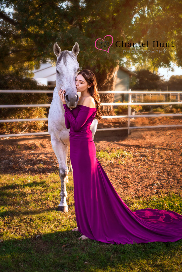 Dreamy Horse Photography