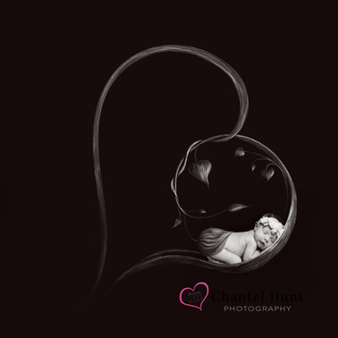 heart b&w drawing B&W watermarked.jpg