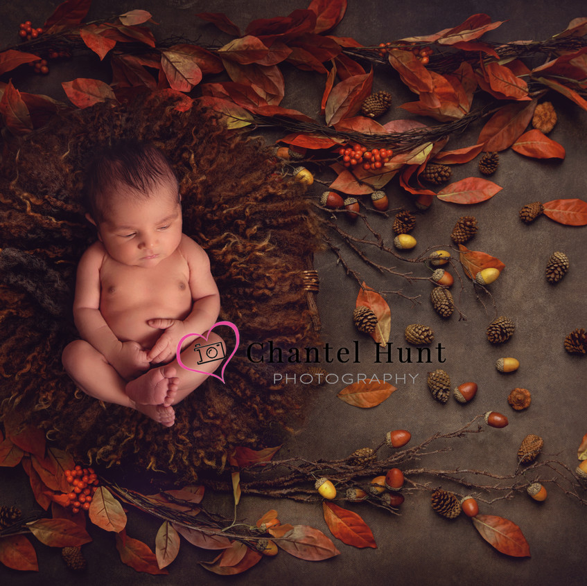 Fall themed newborn image.  Newborn Photography by Chantel Hunt Photography in Yuba City.  Northern California Photographer