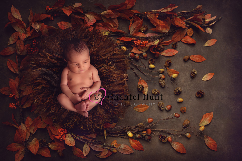 fall baby.jpg