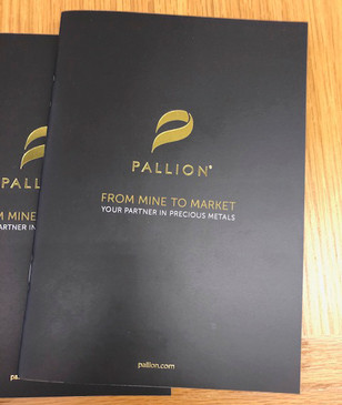 pallion1.jpg