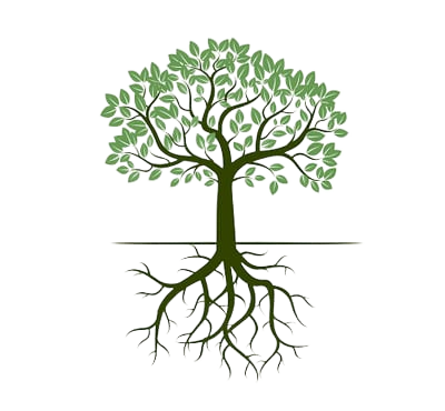 arbre-sophrologie-1-removebg-preview-400