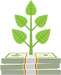 plant growing out of money.png