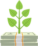 stack of money with a plant growing out of it