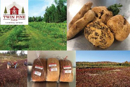 MEET THE VENDOR: Twin Pine Farm