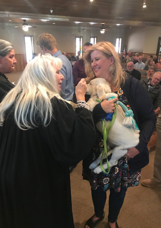 Blessing of the Animals.jpeg