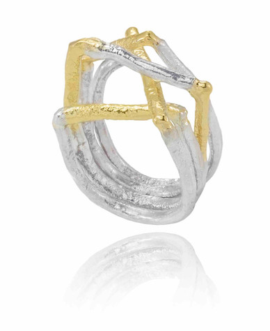 Ring5 - copie.jpg