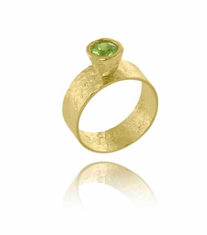 Ring19 - copie.jpg