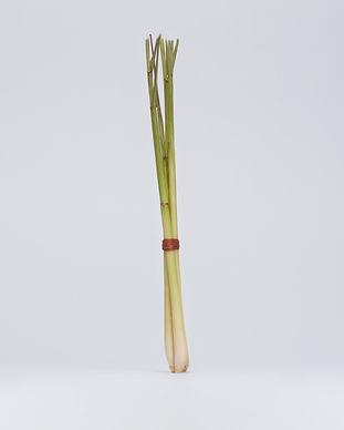 lemongrass-rethos_soap_18-07-20-0316-web