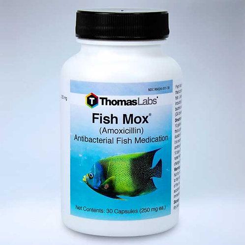 Fish Mox ( 250mg Amoxicillin)