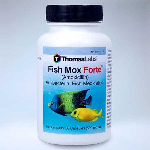 Fish Mox Forte ( 500mg Amoxicillin)