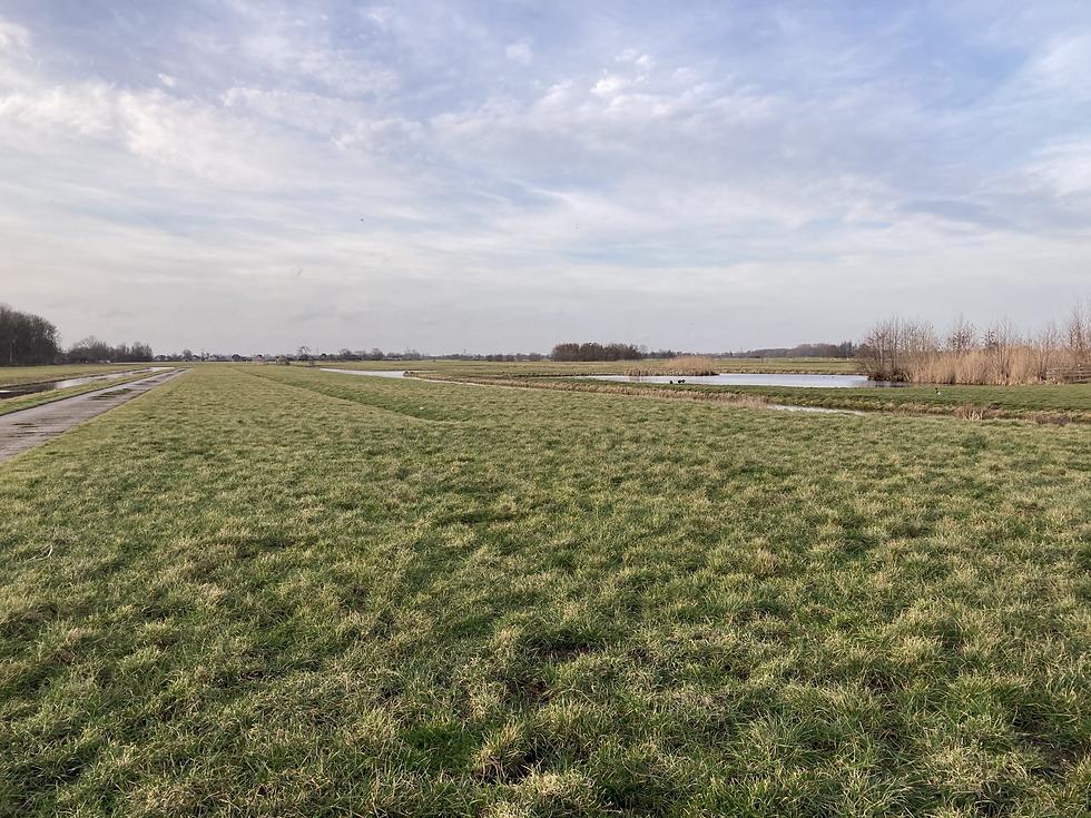 Platteland van Stolwijk