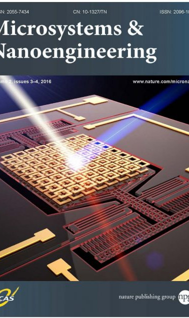 Microsystems and Nanoengineering icons.j