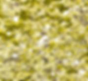 Capture d'écran 2020-05-06 à 11.11.30.pn