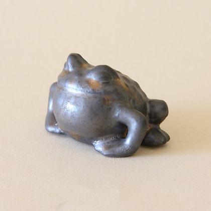 Tea Pet Frog #1