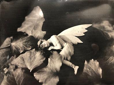 Fairy-10-18.jpg