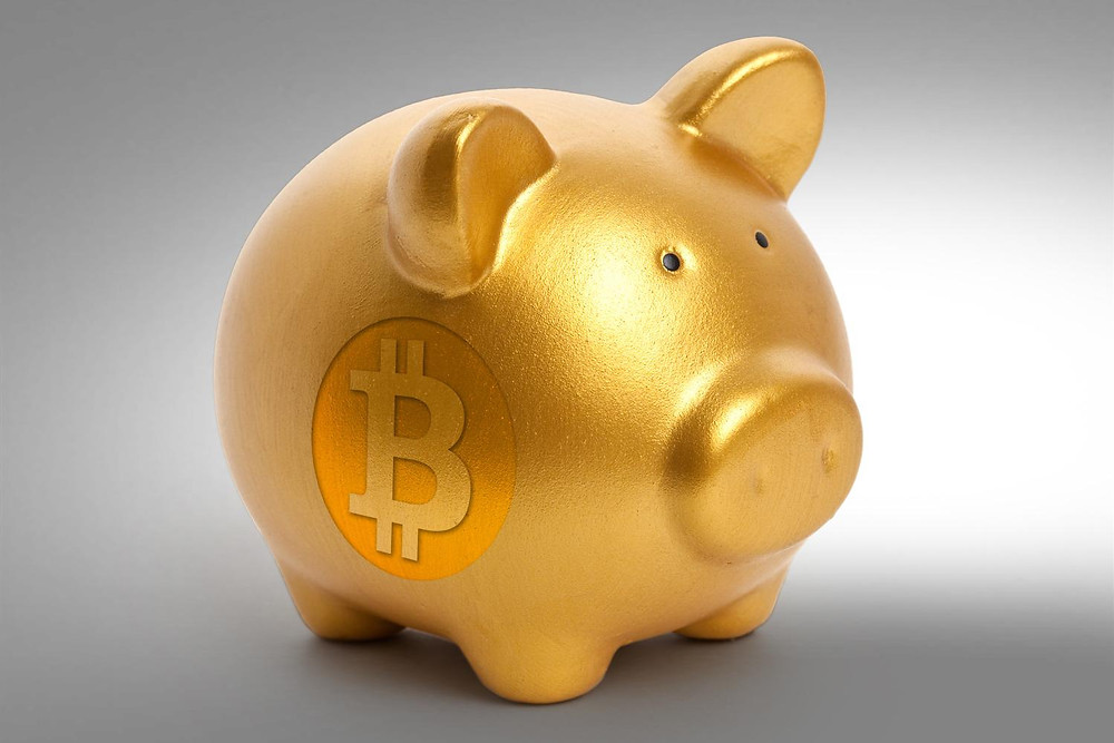Bitcoin Logo with a Piggy