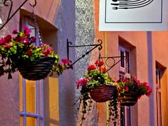 Black River Sign hanging baskets.jpg