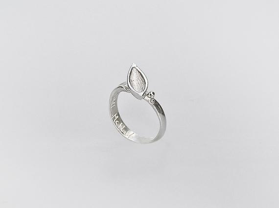 12pod-ring-3OK-570_425