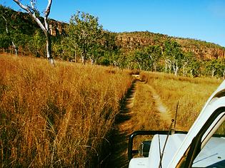 Black Tracks Kimberley Wilderness Adventures