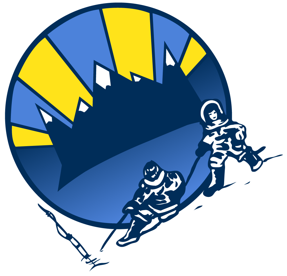 QIA_Emblem-angled