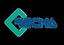 Logo Recma 2021 PNG.png