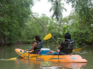 Kayak #1 6hrs 02.jpg