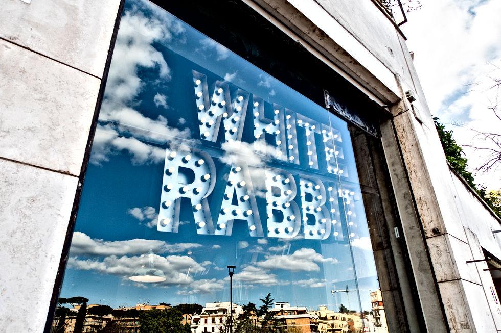 White Rabbit Origin