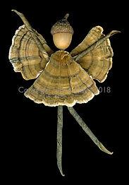 autumn fairy, nature fairy, acorn hat, woodland fairy