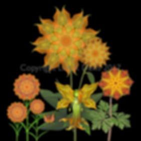 flower fairy, nature fairy, orange fairy, pumpkin fairy