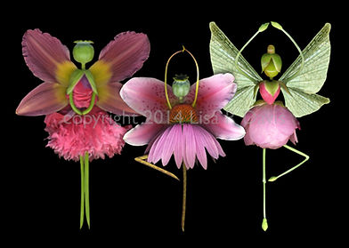 three dancing fairies, flower fairies, pink fairies, dancing fairies