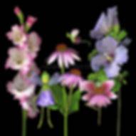 An August garden with 3 flower fairies