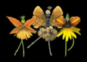 nature fairies, yellow fairies, flower fairies, dancing fairies